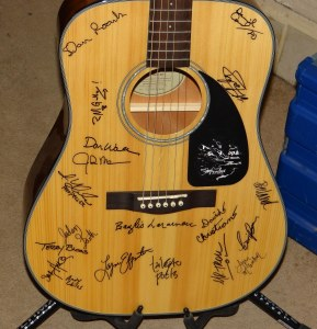 Songwriters For Autism Guitar 2